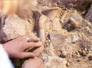 Легендарную Трою раскапывают в общей сложности 125 лет. Ее руины по-прежнему таят в себе немало неожиданностей.